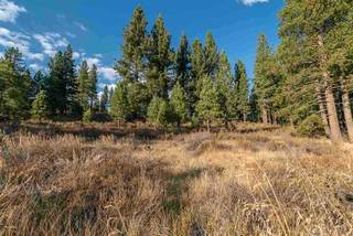 Listing Image 6 for 7601 Lahontan Drive, Truckee, CA 96161
