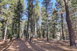 Listing Image 20 for 10181 Surrey Place, Truckee, CA 96161