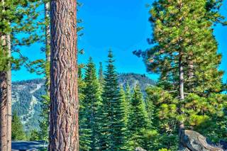 Listing Image 3 for 9321 Nine Bark Road, Truckee, CA 96161