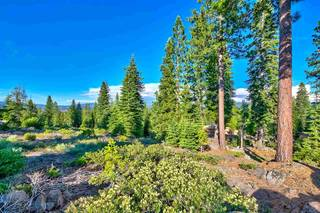Listing Image 10 for 9321 Nine Bark Road, Truckee, CA 96161