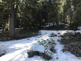Listing Image 17 for 10403 Forest Court, Truckee, CA 96161
