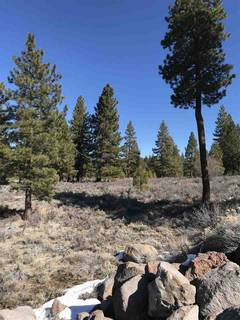 Listing Image 11 for 11567 Whitehorse Road, Truckee, CA 96161