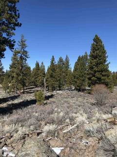 Listing Image 13 for 11567 Whitehorse Road, Truckee, CA 96161