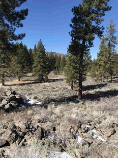 Listing Image 14 for 11567 Whitehorse Road, Truckee, CA 96161