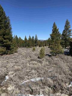 Listing Image 16 for 11567 Whitehorse Road, Truckee, CA 96161