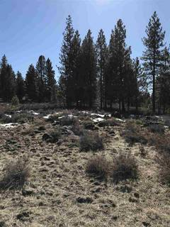 Listing Image 19 for 11567 Whitehorse Road, Truckee, CA 96161