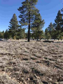 Listing Image 3 for 11567 Whitehorse Road, Truckee, CA 96161