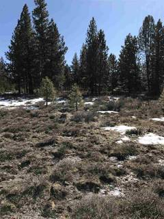 Listing Image 5 for 11567 Whitehorse Road, Truckee, CA 96161