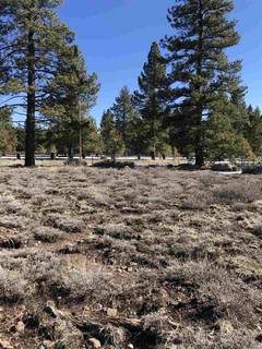 Listing Image 6 for 11567 Whitehorse Road, Truckee, CA 96161
