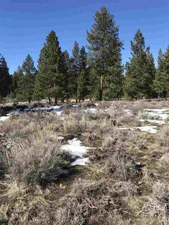 Listing Image 7 for 11567 Whitehorse Road, Truckee, CA 96161