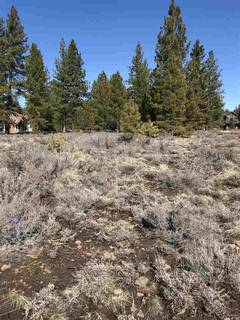 Listing Image 8 for 11567 Whitehorse Road, Truckee, CA 96161