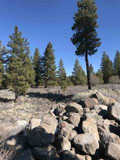 Listing Image 9 for 11567 Whitehorse Road, Truckee, CA 96161