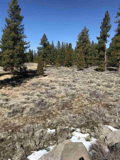 Listing Image 10 for 11567 Whitehorse Road, Truckee, CA 96161