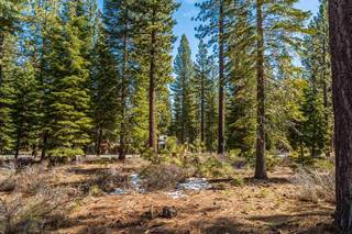 Listing Image 3 for 10259 Olana Drive, Truckee, CA 96161