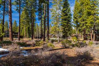 Listing Image 4 for 10259 Olana Drive, Truckee, CA 96161