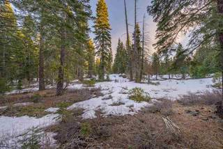 Listing Image 21 for 11755 Silver Fir Drive, Truckee, CA 96161