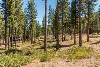 Listing Image 2 for 7109 Villandry Circle, Truckee, CA 96161