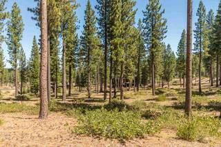 Listing Image 3 for 7109 Villandry Circle, Truckee, CA 96161