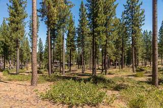 Listing Image 4 for 7109 Villandry Circle, Truckee, CA 96161