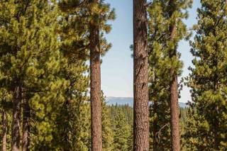 Listing Image 5 for 7109 Villandry Circle, Truckee, CA 96161