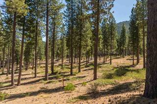 Listing Image 6 for 7109 Villandry Circle, Truckee, CA 96161