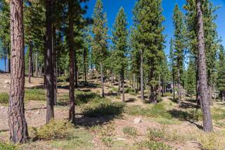 Listing Image 7 for 7109 Villandry Circle, Truckee, CA 96161