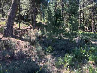 Listing Image 6 for 15653 Donnington Lane, Truckee, CA 96161