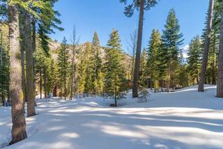 Listing Image 10 for 1670 Upper Bench Road, Alpine Meadows, CA 96146