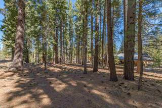 Listing Image 15 for 11401 Golden Pine Road, Truckee, CA 96161-0000