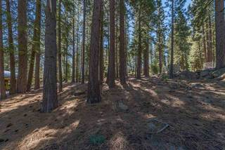 Listing Image 6 for 11401 Golden Pine Road, Truckee, CA 96161-0000