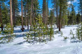 Listing Image 5 for 11731 Ghirard Road, Truckee, CA 96161