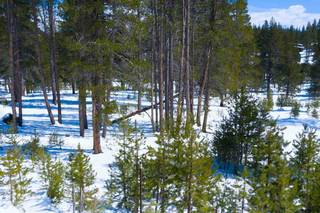 Listing Image 6 for 11731 Ghirard Road, Truckee, CA 96161