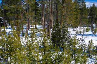 Listing Image 7 for 11731 Ghirard Road, Truckee, CA 96161