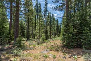 Listing Image 11 for 8210 Olana Court, Truckee, CA 96161