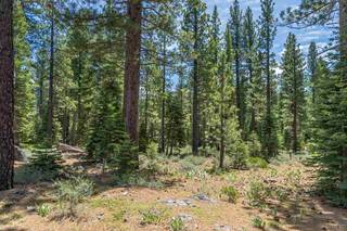 Listing Image 12 for 8210 Olana Court, Truckee, CA 96161