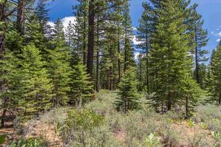 Listing Image 3 for 8210 Olana Court, Truckee, CA 96161