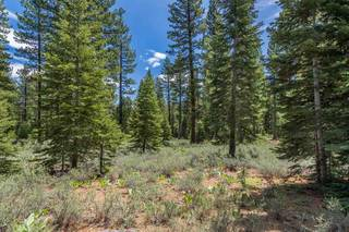 Listing Image 4 for 8210 Olana Court, Truckee, CA 96161