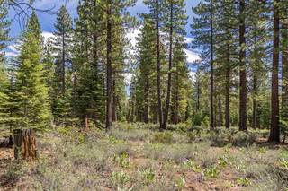 Listing Image 5 for 8210 Olana Court, Truckee, CA 96161
