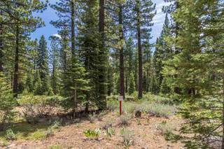 Listing Image 6 for 8210 Olana Court, Truckee, CA 96161