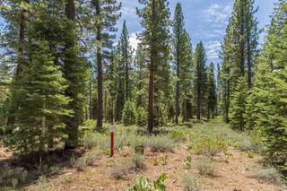 Listing Image 7 for 8210 Olana Court, Truckee, CA 96161