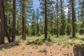 Listing Image 8 for 8210 Olana Court, Truckee, CA 96161