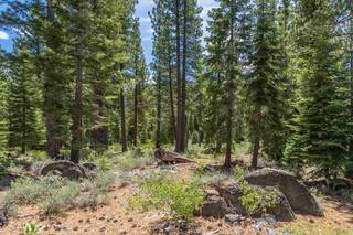 Listing Image 9 for 8210 Olana Court, Truckee, CA 96161