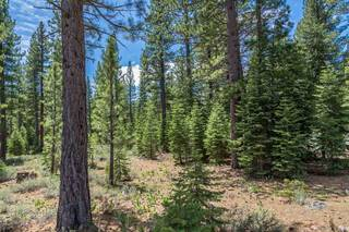 Listing Image 10 for 8210 Olana Court, Truckee, CA 96161