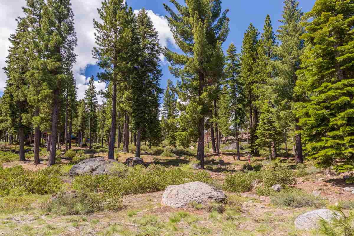 Image for 9513 Wawona Court, Truckee, CA 96161