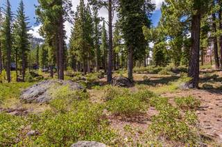 Listing Image 3 for 9513 Wawona Court, Truckee, CA 96161