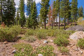 Listing Image 4 for 9513 Wawona Court, Truckee, CA 96161
