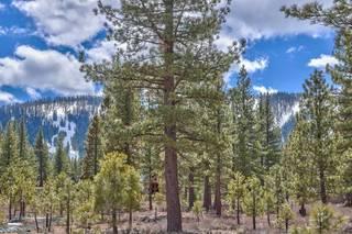 Listing Image 12 for 705 John McKinney, Truckee, CA 96161