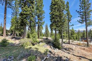 Listing Image 5 for 9321 Nine Bark Road, Truckee, CA 96161-0000