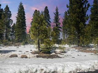 Listing Image 2 for 9309 Gaston Court, Truckee, CA 96161