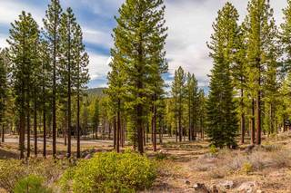 Listing Image 5 for 8201 Ehrman Drive, Truckee, CA 96161
